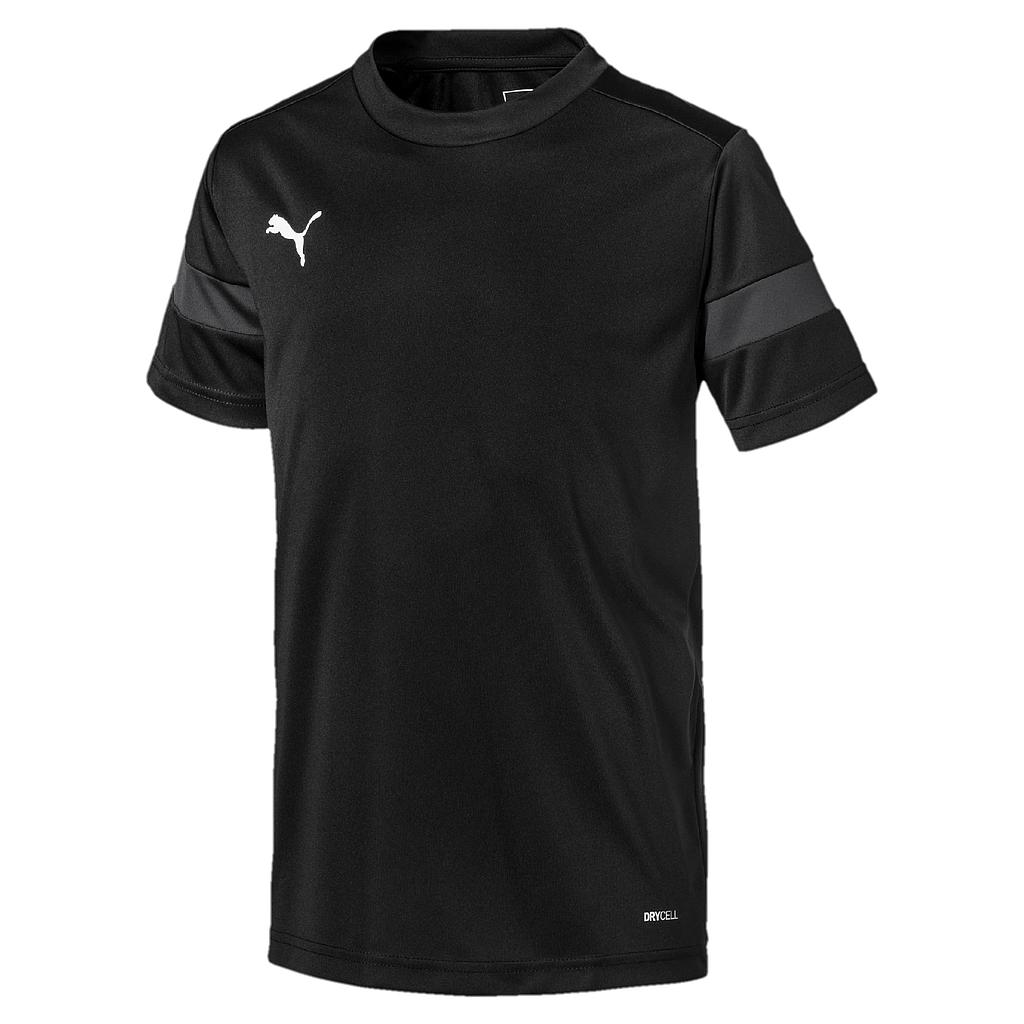 Puma ftblPLAY Training Shirt Asphalt-Black